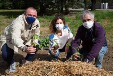 ColtiviAMO Inclusione: La semina dell'Orto Sinergico. <br>Un'altra importante giornata a sostegno dei progetti di solidarietà